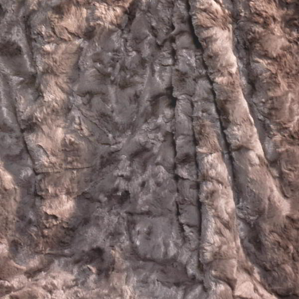 CARMA Kissen Lamm mocca 30x50 cm