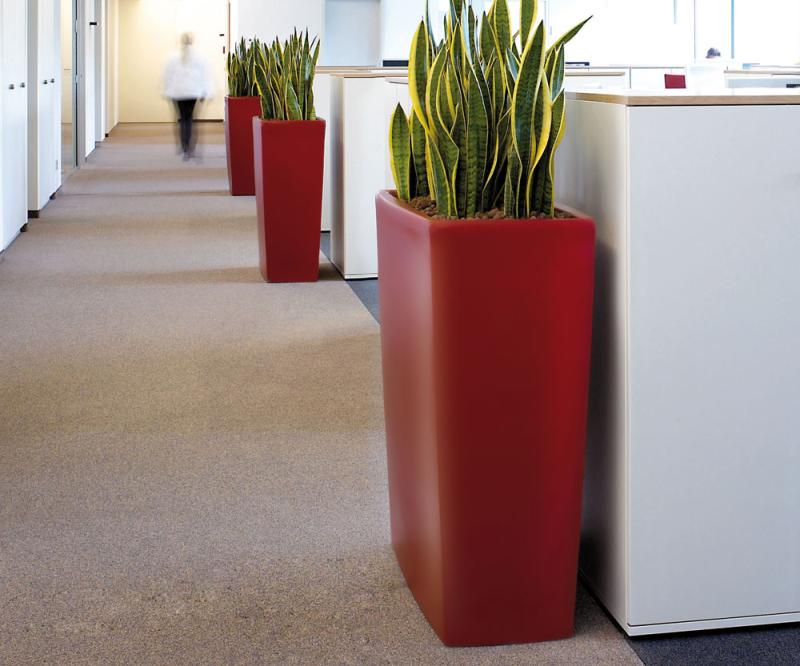 TREVIA 900 K Pflanzbank rot, im Büro