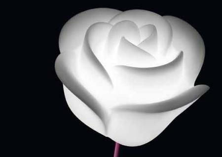 BABY LOVE beleuchtete Rose