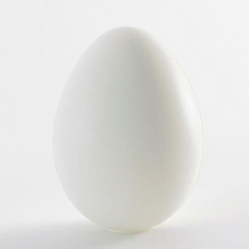DINO beleuchtetes Riesen-Ei